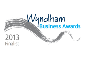 Stepnout Performing Arts: Wyndham Business Awards Finalist 2013